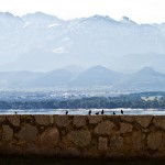 Korsika-20100317_656