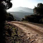 Korsika-20100318_1000