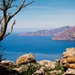 Korsika-20100318_1193