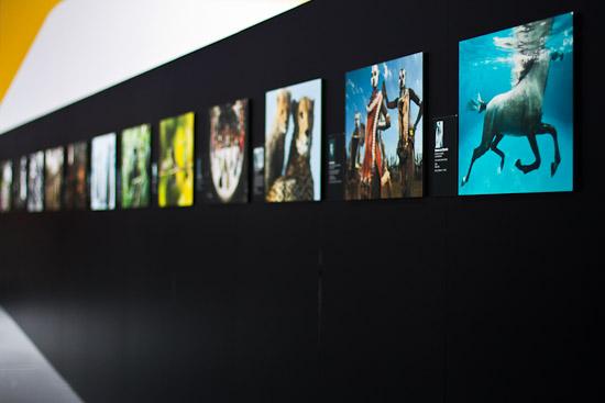 Ausstellung auf dem Canon-Stand
