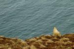 Scottland-Trip_20120218_1047