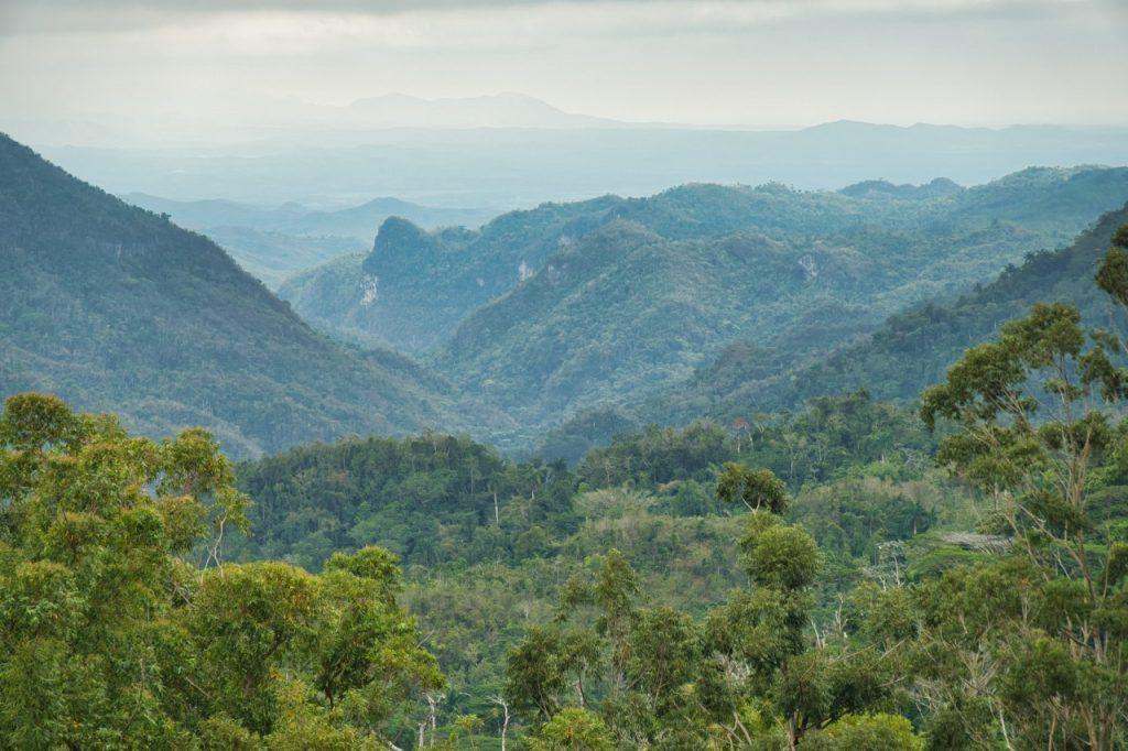 Kuba - Gran parque natural Topes de Collantes - unbearbeitet